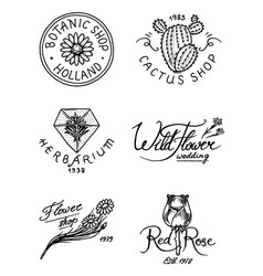 flower shop emblems and logo vintage bouquet vector image