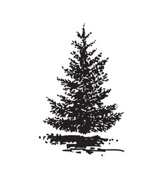 Hand-drawn tree fir black and white realistic vector