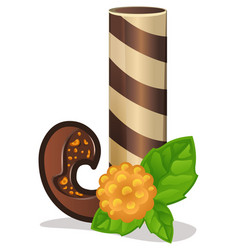 letter j candies chocolate vector image