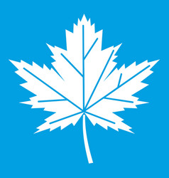 maple leaf icon white vector image