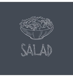 Salad sketch style chalk on blackboard menu item vector