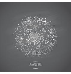 Sea shells in sketch on chalkboard vector image