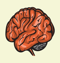 brain4 resize vector image