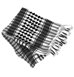 Mens scarf with black ornament isolated vector image vector image