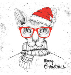 animal sphynx cat dressed in new year hat vector image