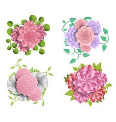 camellia banner set cartoon style vector image
