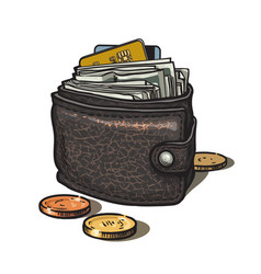 Leather wallet with money credit card and coins vector