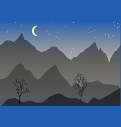 Night landscape with mountain mond stars vector