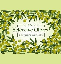 Spanish premium quality olives farm market vector