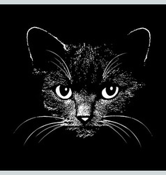 Cat head animal for t-shirt vector