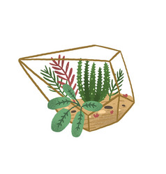 glass geometric terrarium with succulents in vector image