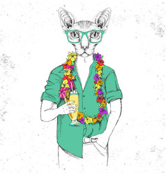 Hipster animal sphynx cat with tropic cocktail vector