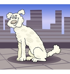 poodle dog in the city cartoon vector image