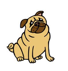 Pug friendly dog vector