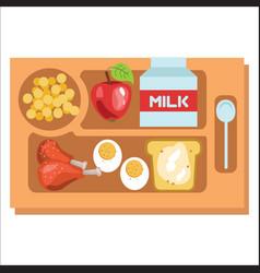 School lunch tray children dinner consist vector