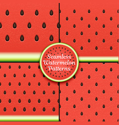 Set of seamless watermelon patterns surface vector
