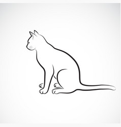 sitting cat on a white background pet animals vector image