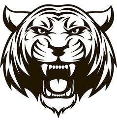 Ferocious tiger head vector image