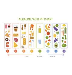 Alkaline diet ph chart vector