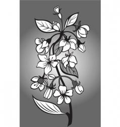 Blossom branch vector