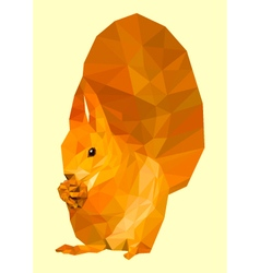 Polygonal squirrel vector image