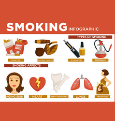 smoking infographic types and affect on body vector image