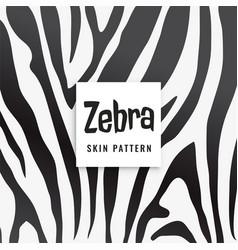zebra print pattern in black and white vector image