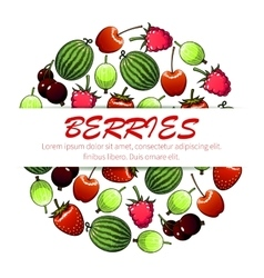 Berry fruit poster for food and drink design vector