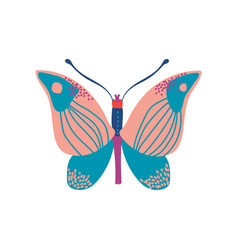 butterfly insect with colorful wings vector image