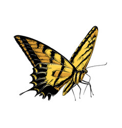 hand drawn sketch butterfly in yellow color vector image