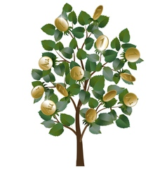 Money tree with leaves and gold coins vector