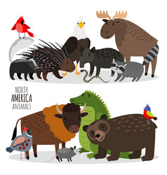 popular north america animals groups vector image