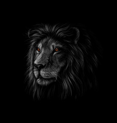 Portrait of a lion head on a black background vector