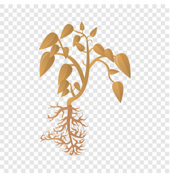 soybean dry plant icon cartoon style vector image