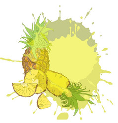 whole and fresh pineapple pieces vector image