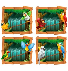 Wild birds in the forest vector image