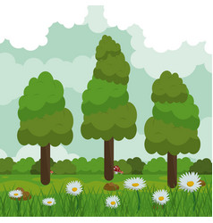 colorful background of field with daisy flowers vector image vector image