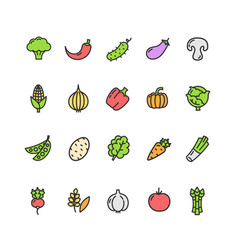 vegetables food color thin line icon set vector image vector image