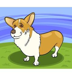 pembroke welsh corgi dog cartoon vector image