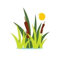 Reed and Sedge Cartoon vector image