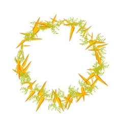 juicy round frame of carrot vector image vector image