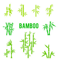 Bamboo stalks and leaves icons vector
