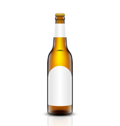 Beer bottle set vector