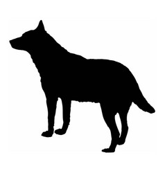Dog wolf black silhouette isolate on white vector