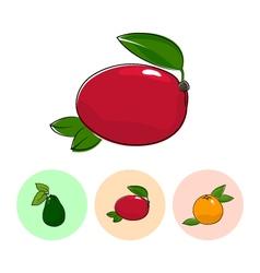 Fruit Icons Mango Avocado Grapefruit vector
