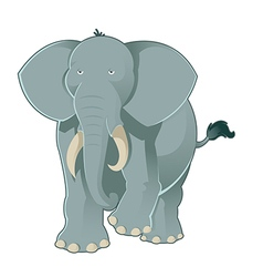gray elephant vector image
