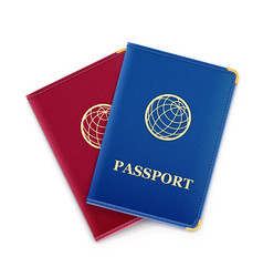 Red and blue passport vector