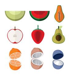 simple flat open slice fruits set vector image