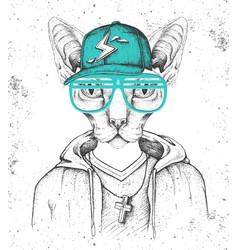 Sphynx cat dressed in cap like rapper vector