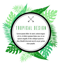 tropical frame with palm leaves vector image vector image